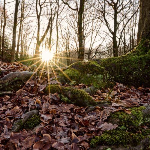 fotokurse_wuppertal_landschaften_002